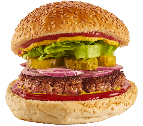 The Fake Meat Vegan Burger